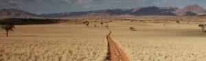 namibia_in_liberta_banner