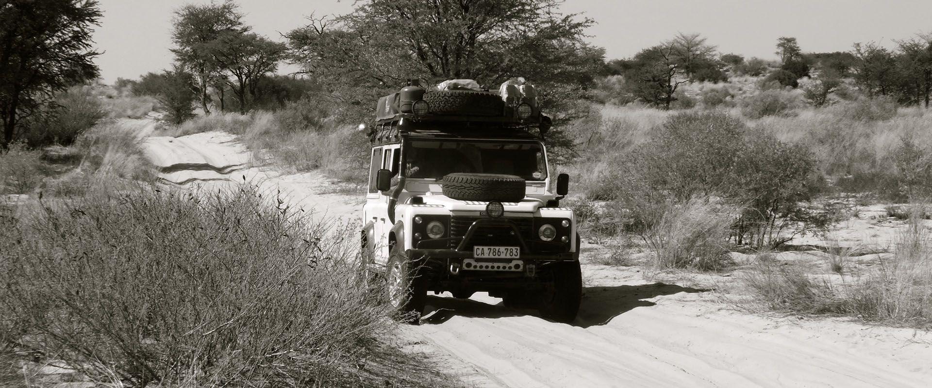in fuoristrada lungo le piste di sabbia del offroad 4x4 kgalagadi transfrontier park, tra sudafrica e botswana