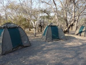 tende di un campo mobile per safari low-cost i botswana
