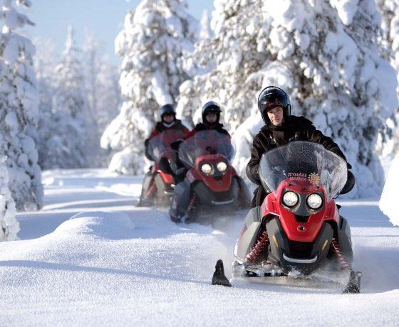 safari in motoslitta nelle foreste di kuusamo, in lapponia (finlandia)