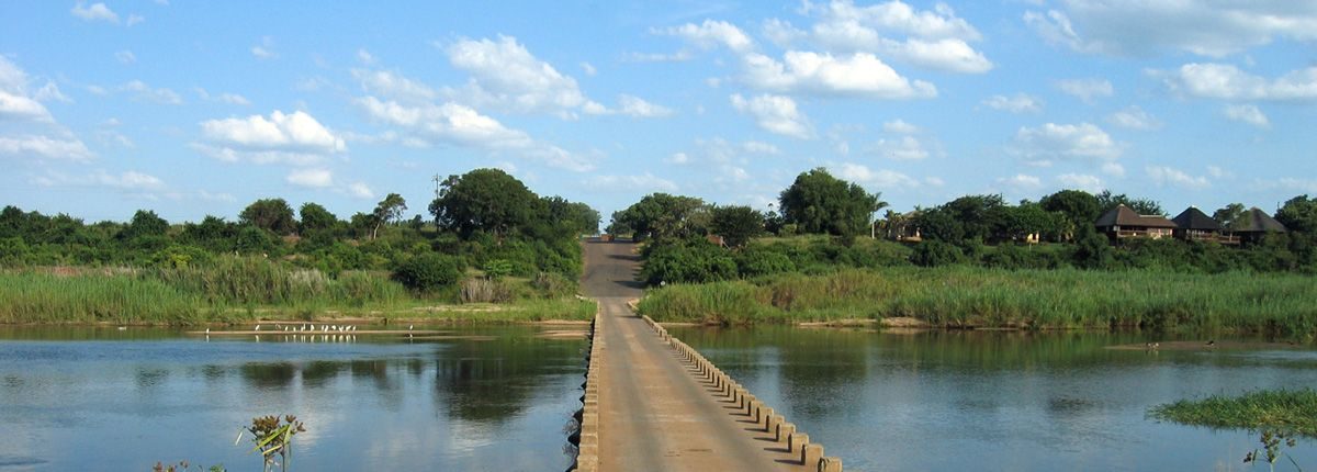 crocodile bridge kruger