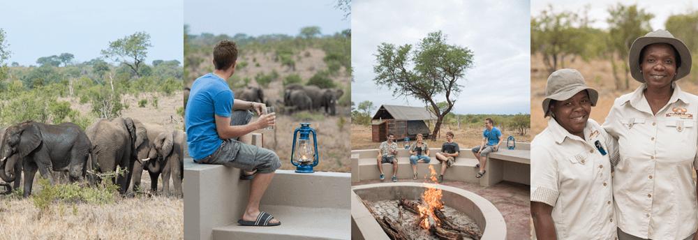 buffelshoek camp manyeleti game reserve