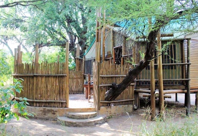 limpopo_forest-tented_camp_ mapungubwe
