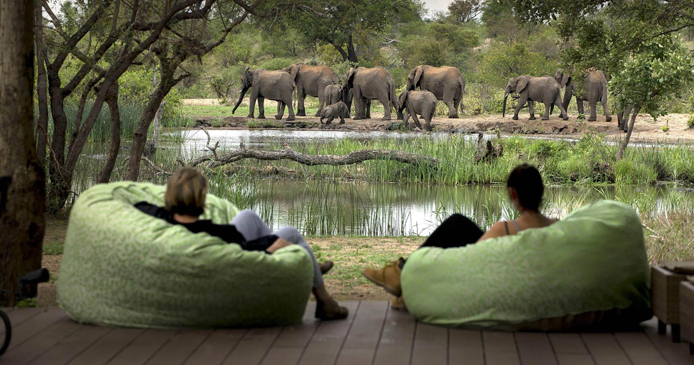 tanda_tula_safari_camp_timbavati